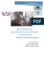 Metodos de Cacrif Ovino y Caprino