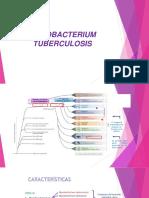 (Ok) Mycobacterium w2018