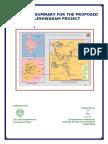 Kaleshwaram Project Executive Summary
