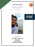 Geological Report - Clifford Cobsilen