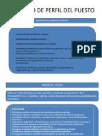 Formato de Perfil Del Puesto PDF Estresssssssssssss