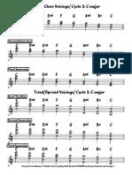 TRIADES TODOS OS CICLOS (PROFICIENCY BERKLEE).pdf