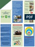 353536403-Leaflet-Germas.docx