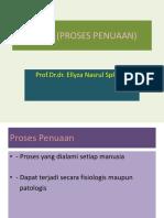 AGING (PROSES PENUAAN).pptx
