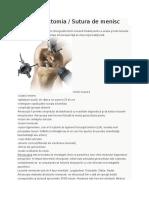 Artroscopia.docx