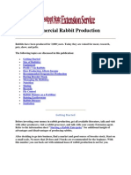 Commercial Rabbit Production