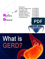 Gastroesophageal Reflux Disease Fix