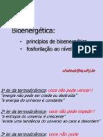 BIOENERGÉTICA - Princípios e Fosforilação Nível Substrato