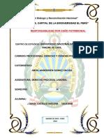 Auto-Admisorio-de-La-Demanda-Laboral.pdf