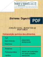 Sistema Digestoriomonitoriajordo2013 140125210126 Phpapp01 (1) (1)