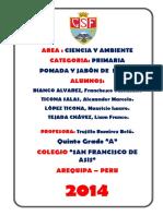 231483442-Proyecto-La-Menta-Feria-de-Ciencias-2014.docx