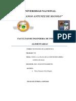 Informe 2 Sierra Andina