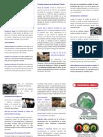 triptico-seguridad-vial-2011-141002180239-phpapp01-151118142111-lva1-app6891
