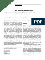 Ultra-low-dose  Naltrexone