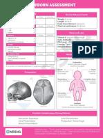 OB 101 Newborn Assessment