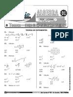 Algebra Teoria de Exponentes