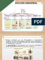 Microorganismos y Alimentos Fermentados