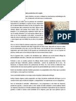 Relato PDC.docx