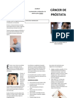 61812713 Triptico Cancer de Prostata