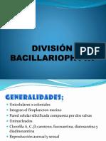 BACILLARIOPHYTA - JPC (1)