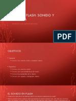 Clase 3 Flash