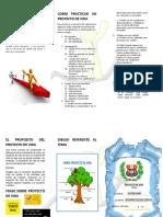 PROYECTO DE VIDA TRIPTICO.docx