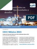 CiclosCombinados.pdf