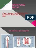 Consideraciones Anatomicas (1).Output
