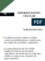 Diferenciación..pdf