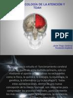 TDAH PAMPLONA 2016.ppt