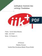 Aswin Satria Hutama_10117027