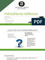 Exposicion Hidrocarburos Naftenicos A104