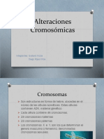 Cromos.pptx