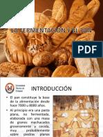 Fermentacion Del Pan