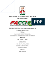 Analista de Sistemas Informe-1