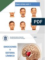 Emociones y Cerebro