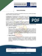 11.1.SALUD OCUPACIONAL.docx