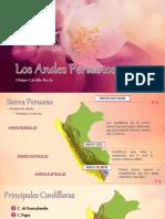 Los Andes Peruanos.pptx