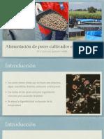 Alimentacion de Peces en Acuacultura 2