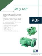 GSM y GSP.pdf