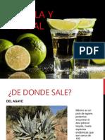 Tequila y Mezcal