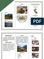 Triptico Region Sierra