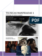 RESUMEN-MANFRIADO-5 (2)