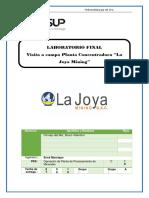 Informe de Vsita La Joya Minig Bruno Cornejo Del Mar