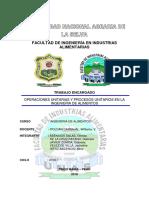 MONOGRAFIA-DE-ING1.docx