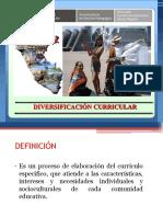 DIVERSIFICACION.pptx
