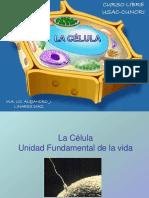 Presentacion 2 Curso Libre Biología 2012