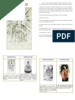 219134481-Historia-das-Divindades.pdf