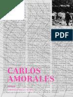 Carlos Amorales. Axiomas para la acción.pdf