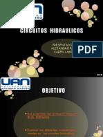 CIRCUITOS  HIDRAULICOS.pptx